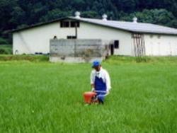 契約栽培米を100%使用!