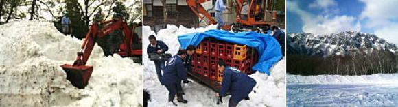 自然の冷蔵庫、雪室からの掘り出し作業